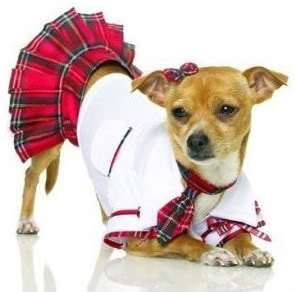 Here's what you get if you google sexy dog costume instead of sexy MAN dog costume. I can't stop looking at it.